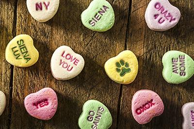Valentine's Day at Siena
